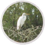Great Egret Lookout Round Beach Towel