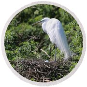 Great Egret Nest Round Beach Towel