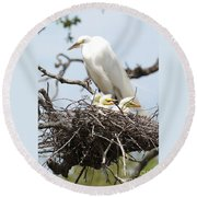 Great Egret Nest With Chicks And Mama Round Beach Towel