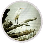Great Egret On A Fallen Tree Round Beach Towel by Joan McCool