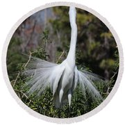 Great Egret Showoff Round Beach Towel