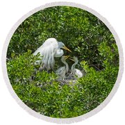 Great Egret With Chicks On The Nest Round Beach Towel