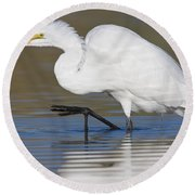 Great Egret With Leg Up Round Beach Towel