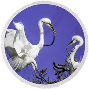 Great Egrets Nesting Round Beach Towel