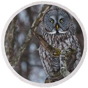 Great Gray Owl Round Beach Towel