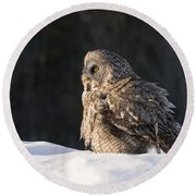 Great Gray Owl Pictures 788 Round Beach Towel