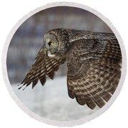 Great Grey Owl In Flight Round Beach Towel by Jakub Sisak