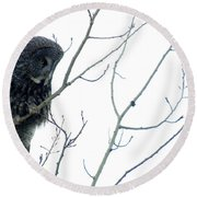 Great Grey Owl On Watch Round Beach Towel