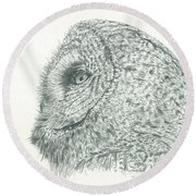 Great Grey Owl Round Beach Towel