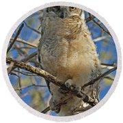 Great Horned Owl 2 Round Beach Towel