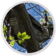 Great Horned Owl 5 Round Beach Towel