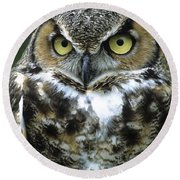 Great Horned Owl At Rest Round Beach Towel