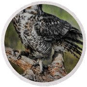 Great Horned Owl On Branch Round Beach Towel