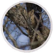 Great Horned Owl On Watch Round Beach Towel