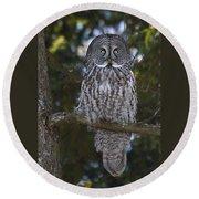 Great Owl Eyes Round Beach Towel