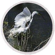 Great White Egret Building A Nest V Round Beach Towel