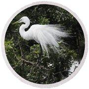 Great White Egret Building A Nest Vii Round Beach Towel