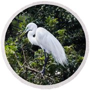 Great White Egret Building A Nest Viii Round Beach Towel