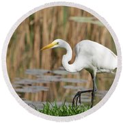 Great White Egret By The River Too Round Beach Towel