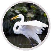 Great White Egret Eating Fish 1 Round Beach Towel