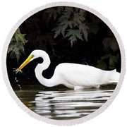 Great White Egret Eating Fish 2 Round Beach Towel