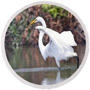 Great White Egret Fishing 1 Round Beach Towel