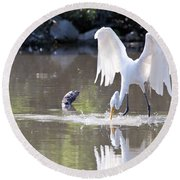 Great White Egret Fishing Sequence 4 Round Beach Towel