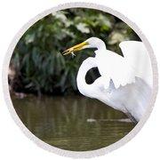 Great White Egret Show Off Round Beach Towel