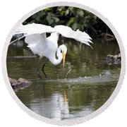 Great White Egret Wingspan And Turtles Round Beach Towel