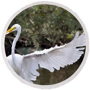 Great White Egret Wingspan1 Round Beach Towel