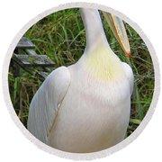 Great White Pelican Round Beach Towel