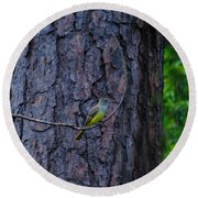 Greater Crested Flycatcher Round Beach Towel