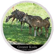 Greater Kudu Round Beach Towel