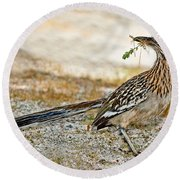 Greater Roadrunner With Nest Material Round Beach Towel