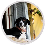 Greek Dog Round Beach Towel