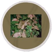 Green And Brown Leaves Round Beach Towel