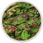 Green And Purple In Nature Round Beach Towel