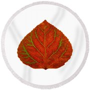 Green And Red Aspen Leaf 3 Round Beach Towel