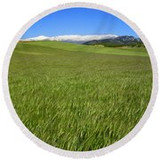 Green And Snow Round Beach Towel