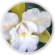 Green And White Cattleya Orchid Round Beach Towel