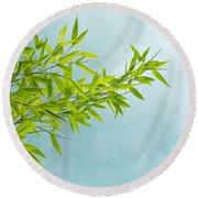 Green Bamboo Round Beach Towel by Priska Wettstein