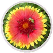Green Bee Round Beach Towel