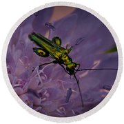 Green Bug Round Beach Towel