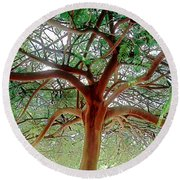 Green Canopy Round Beach Towel by Terry Reynoldson