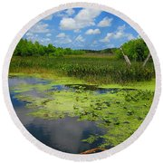 Green Cay Nature Preserve Beauty Round Beach Towel