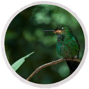 Green-crowned Brilliant Round Beach Towel