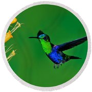 Green-crowned Woodnymph Round Beach Towel