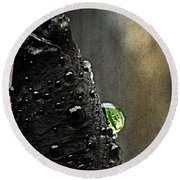 Green Droplet  Round Beach Towel