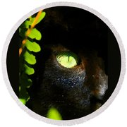 Green Eyed Black Cat Round Beach Towel