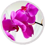 Green Field Sweetheart Orchid No 1 Round Beach Towel